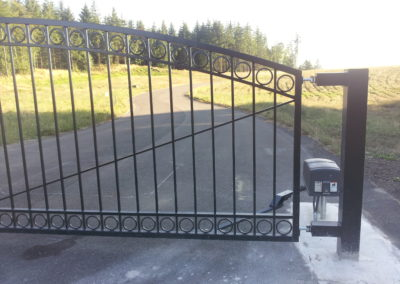 Single Swing Gate