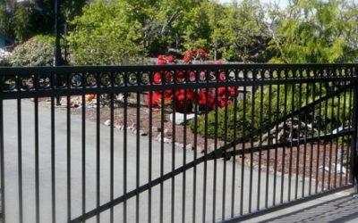 Why We Build Fences