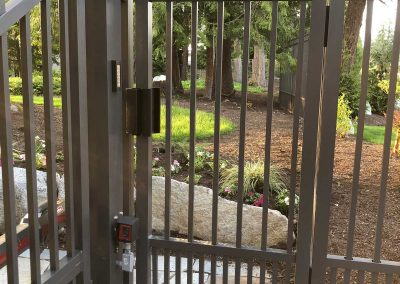 AFS Series C 3' x 6' Walk Gate with Puppy Panels, Dark Bronze